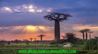 Cadre de vie Madagascar