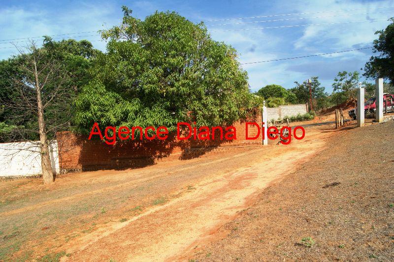 www.diego-suarez-immobilier.com Discothèque en vente Raména