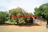 Discothèque en vente Raména www.diego-suarez-immobilier.com