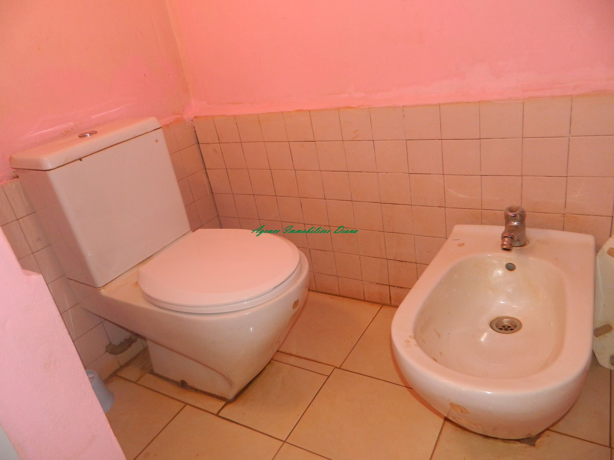 www.diego-suarez-immobilier.com