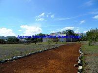 www.diego-suarez-immobilier.com01