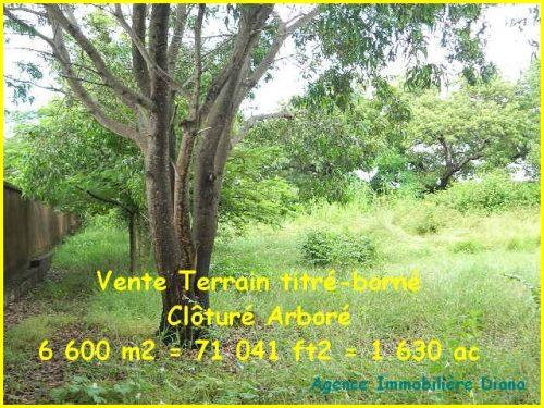 Vente terrain 6600m² clôturé quartier Scama